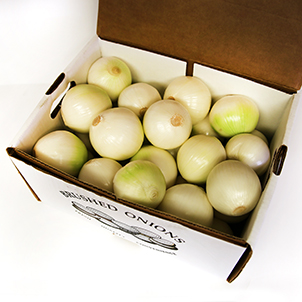 Wholesale Onion Sets | Onion Boy Inc